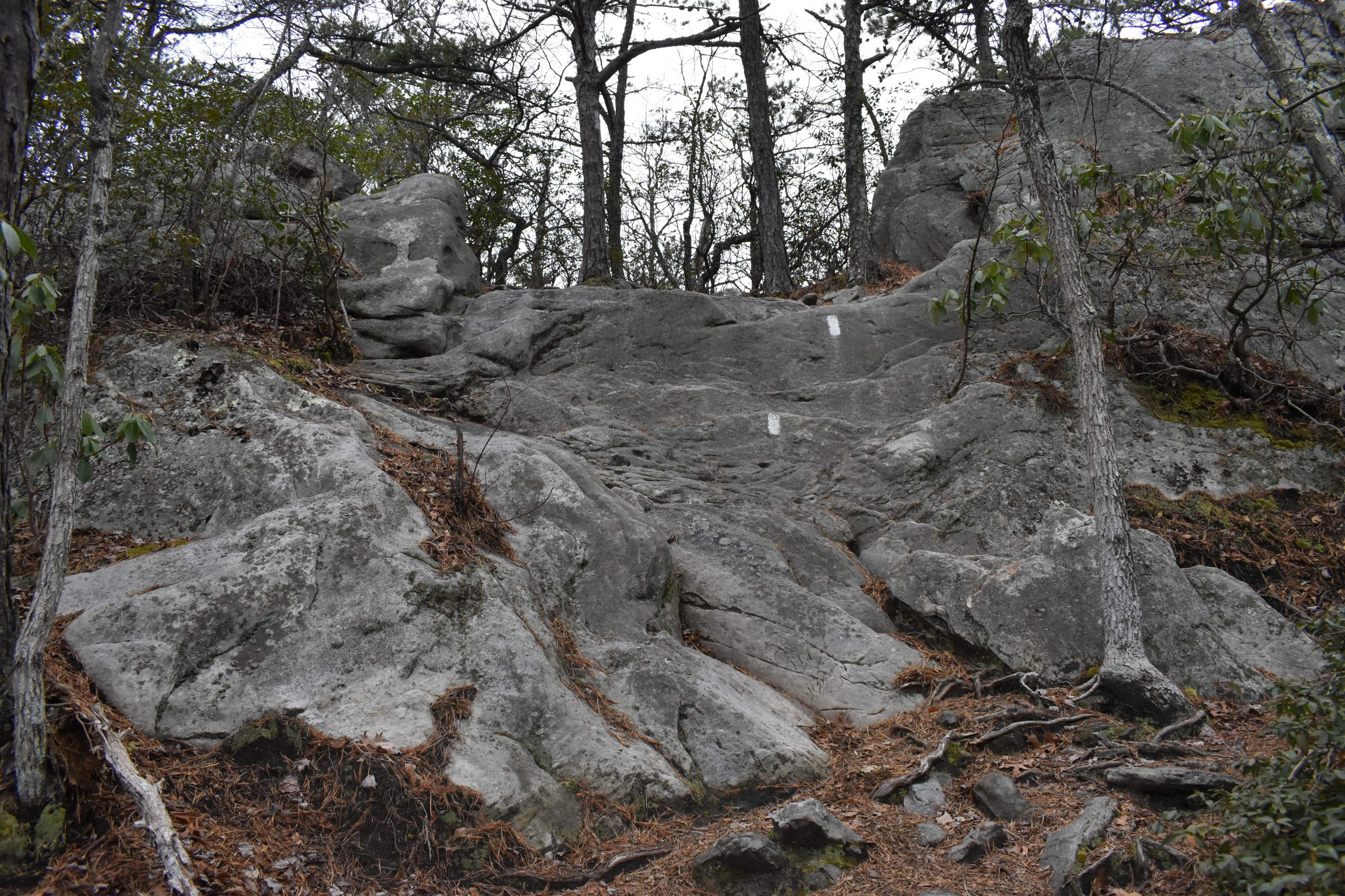 Dragons Tooth Alt Rock Crawl Yoanoke