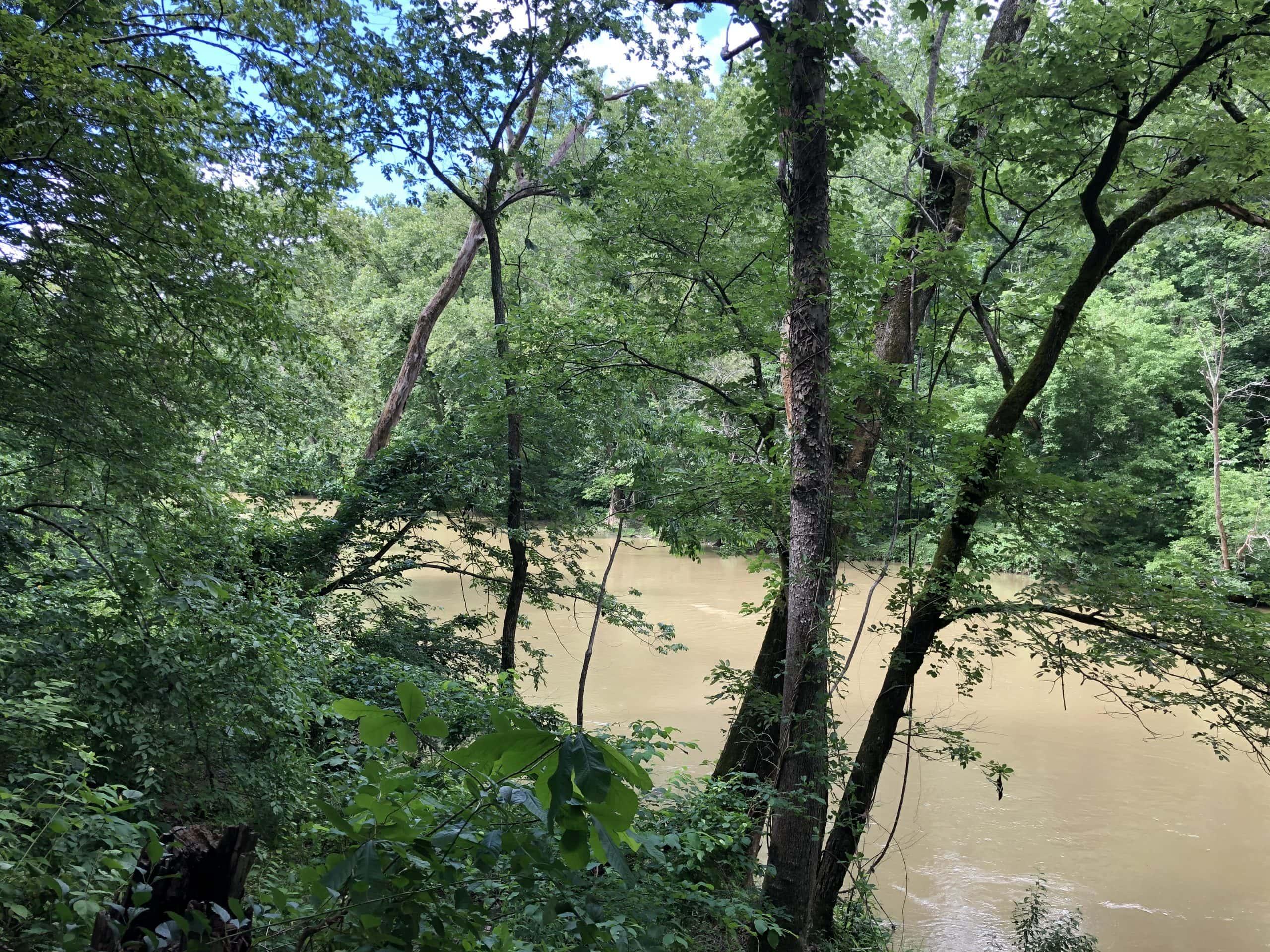 Nature Walks Near Roanoke Va - Explore Park - Yoanoke