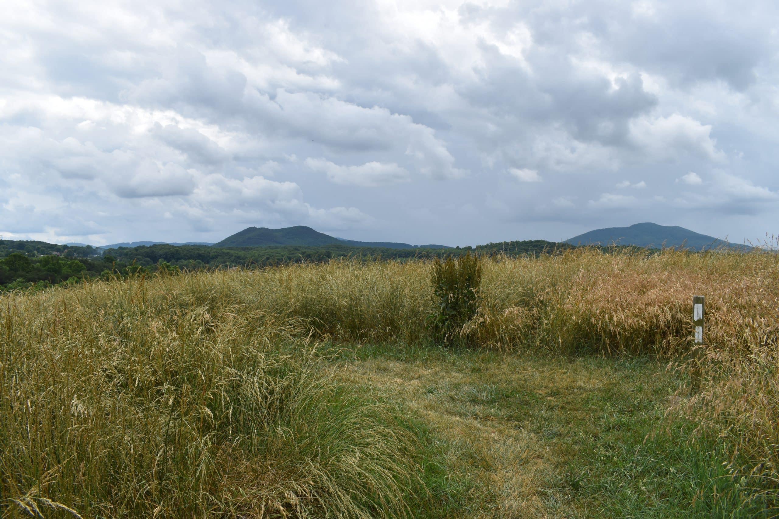 Fulhardt Knob via Appalachian Trail - Yoanoke