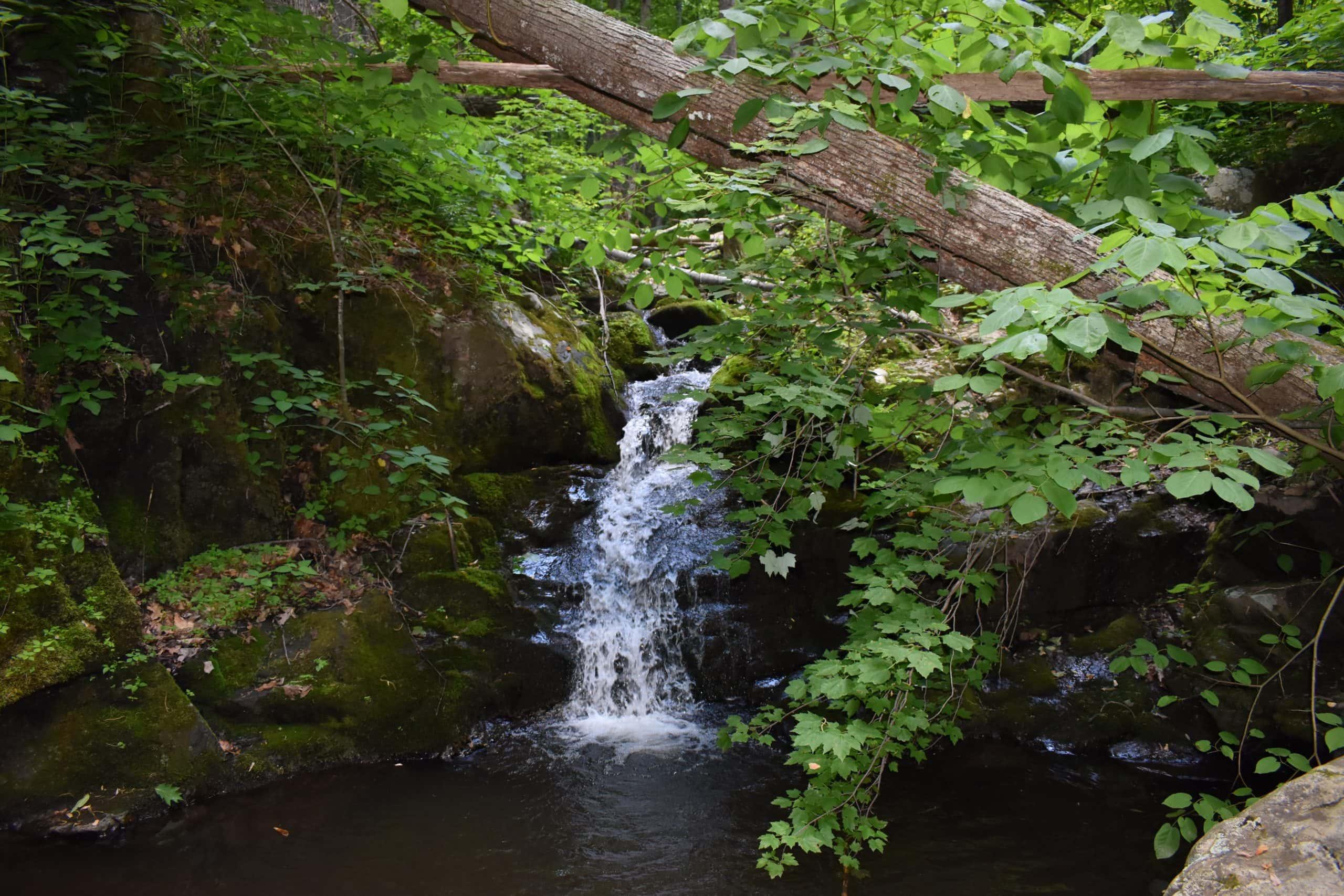 Poor Mountain Natural Area Preserve - Yoanoke