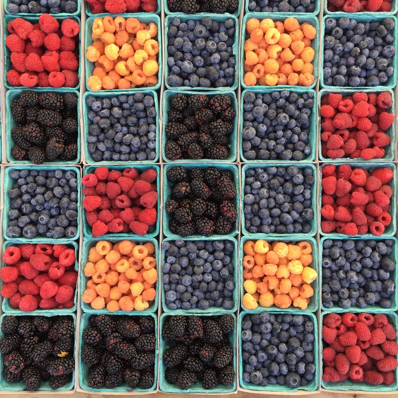 Berries Artistic Stock Photo